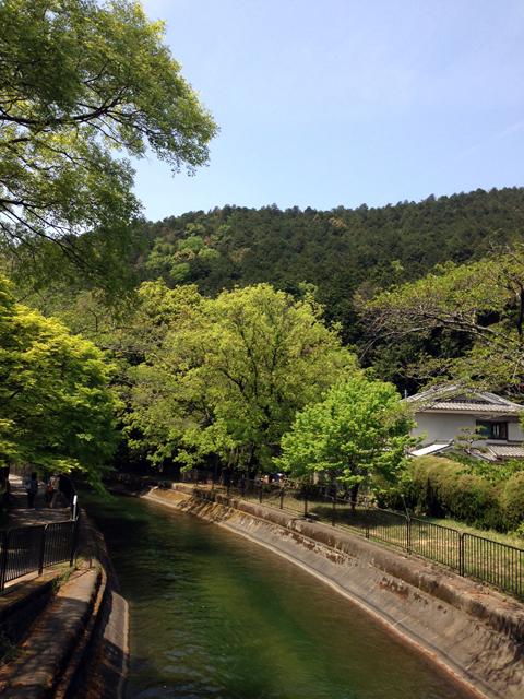d_kyo426-2.jpg