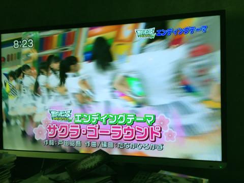m_sakura-2.jpg